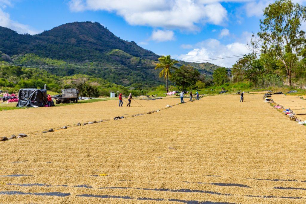 Nicaragua San Juan del Rio Coco 1