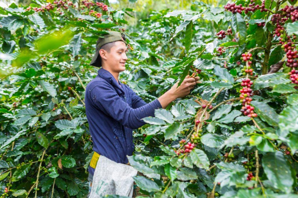 Nicaragua San Juan del Rio Coco 2