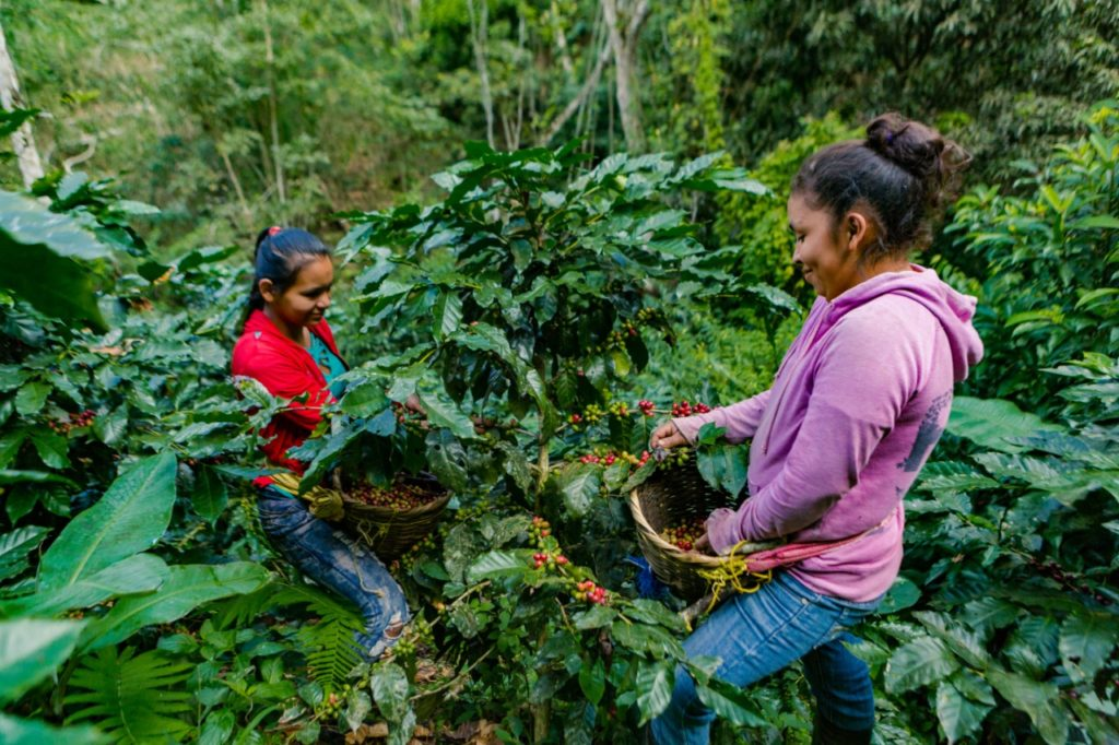 Nicaragua San Juan del Rio Coco 3